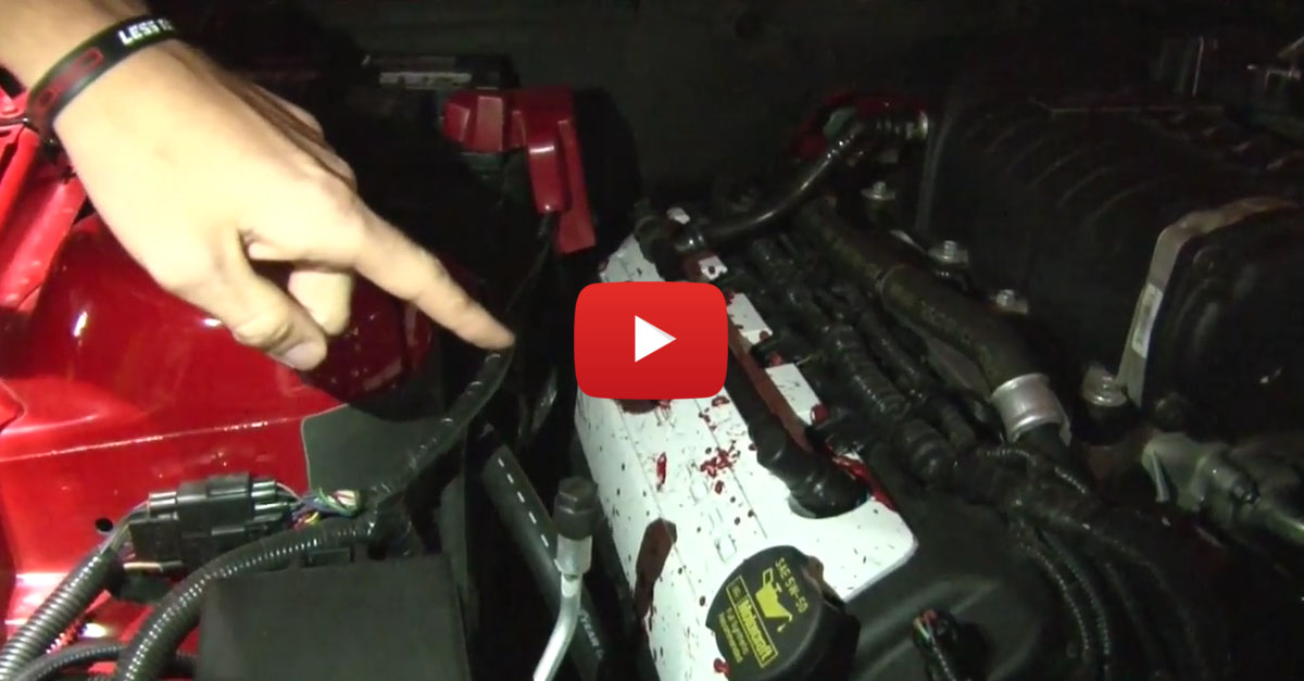 Can A Mustang Leave A Car Meet Without Crashing?