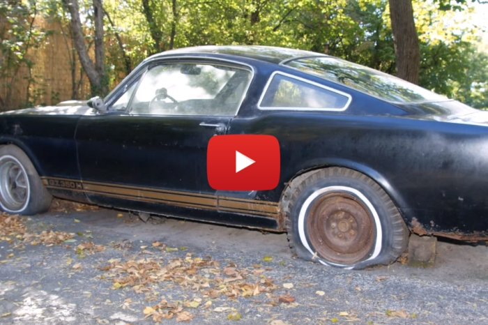 Unearthing a 1966 Shelby G.T. 350H is the Ultimate Barn Find