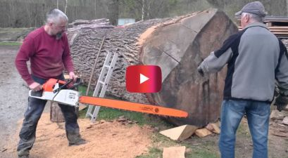 Stihl Chainsaw Dominates Massive Oak Log