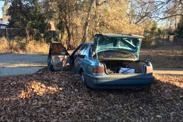 Car Theft Victim Beats up Man Who Stole Honda Accord