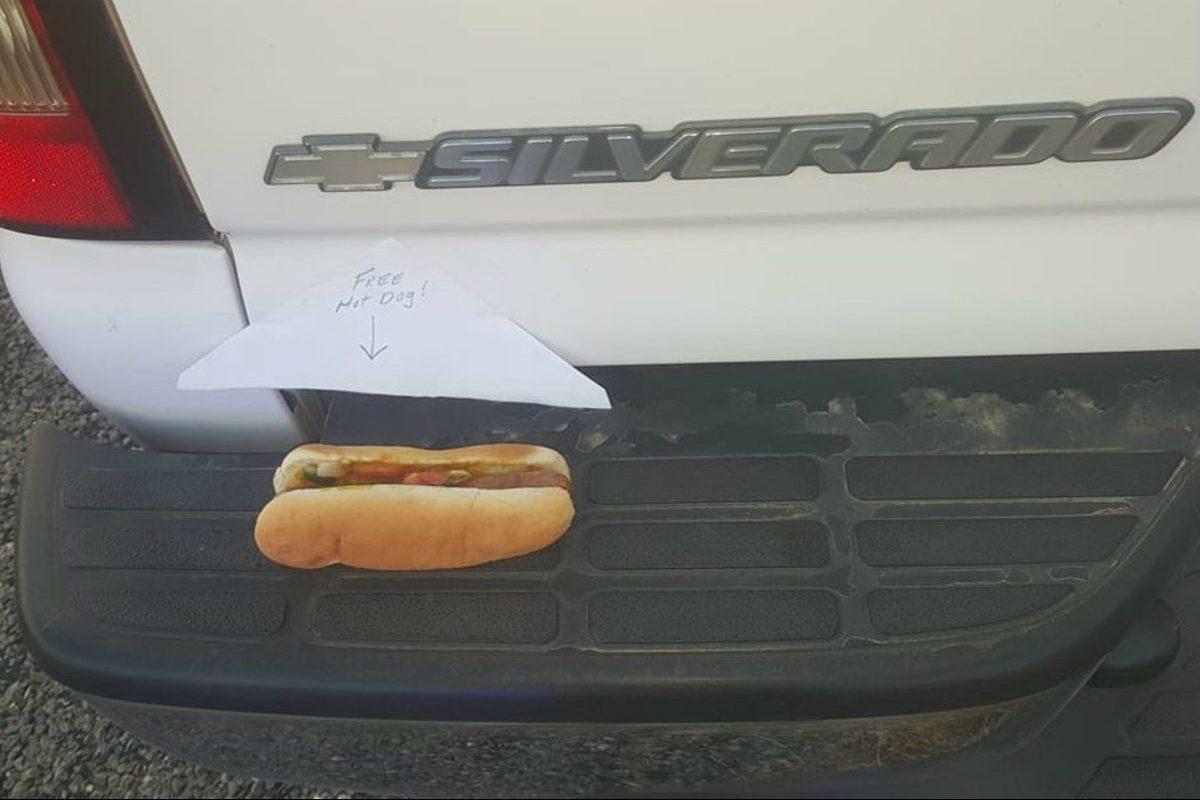hot dog on bumper