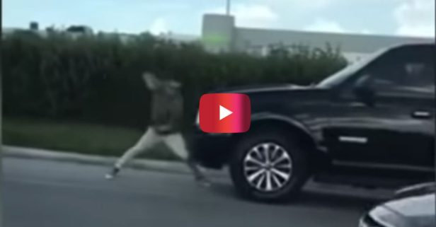 Florida Man Lets It Rip on This SUV in Bizarre Road Rage Video