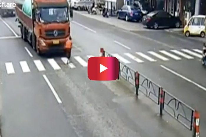 Man Tries Saving Dog on the Road, but Ends up Seriously Regretting It