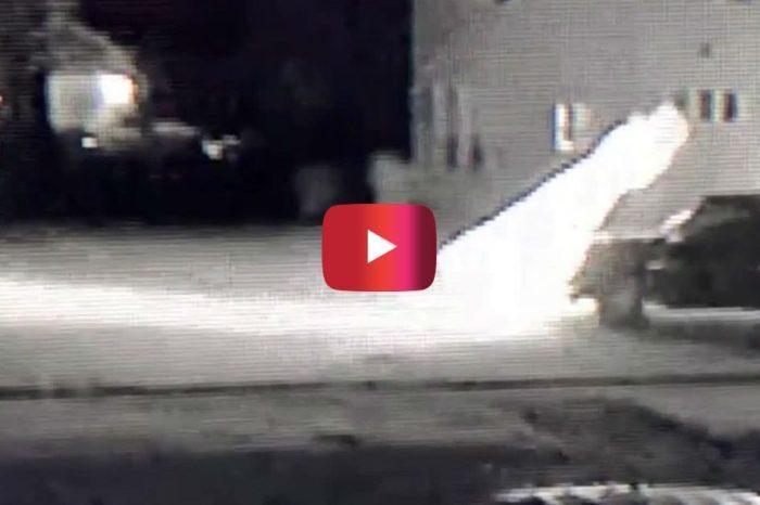 Surveillance Video Captures Indiana Man Plowing Through Christmas Display