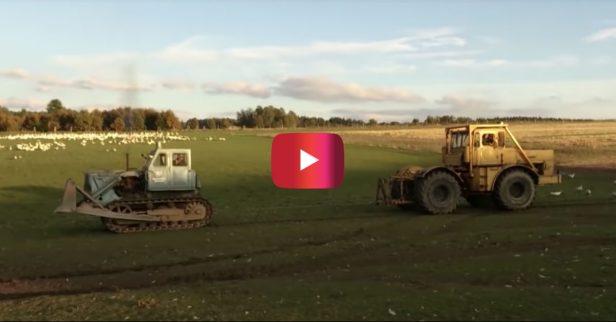Tractor Tug of War Is Blood-Pumping, Adrenaline-Inducing Fun
