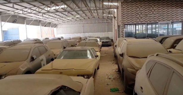Classic Mustangs! Luxury Lambos! This Car Graveyard Is an Auto Nut's Paradise
