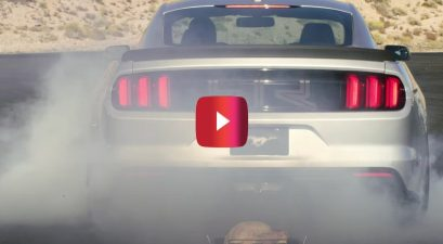 smoking turkey mustang rtr