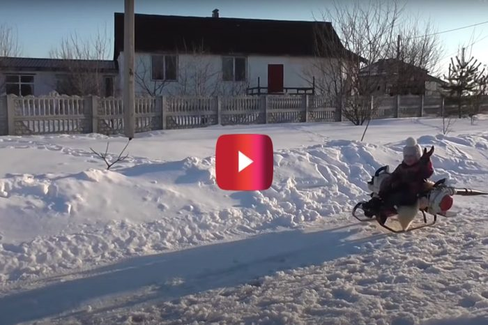 Dad Creates Turbo Sled for His Daughter Using 2 Leaf Blowers
