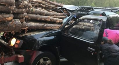 logging truck crash