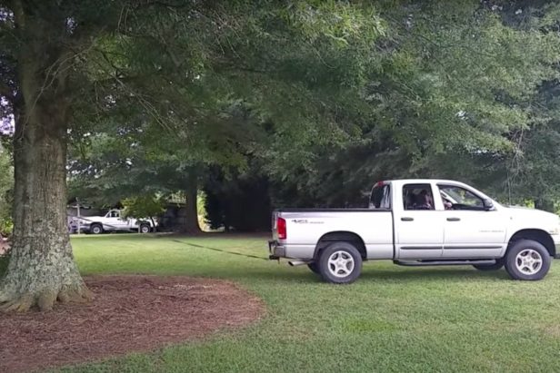 Dodge Truck Uproots Tree, But Leaves the People Wanting More