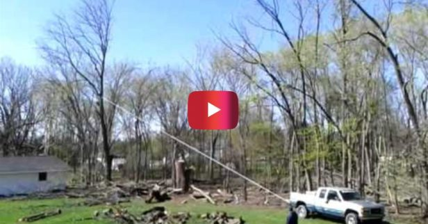 Tree Uprooting Attempt With Truck and Chainsaw Ends in Disaster