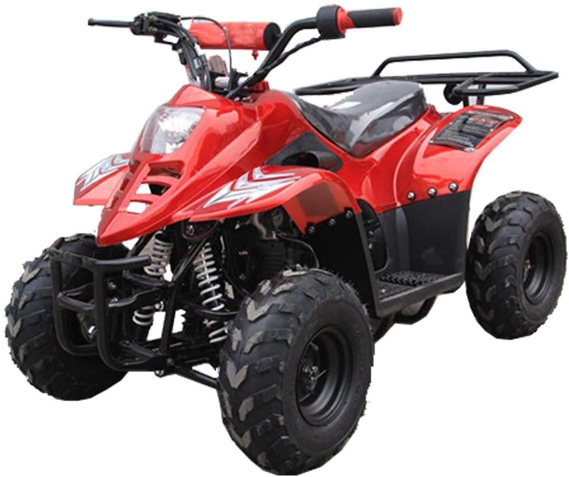 TAO TAO 110cc ATV Fully Automatic Four Wheelers ATV Quads for Kids Burgundy