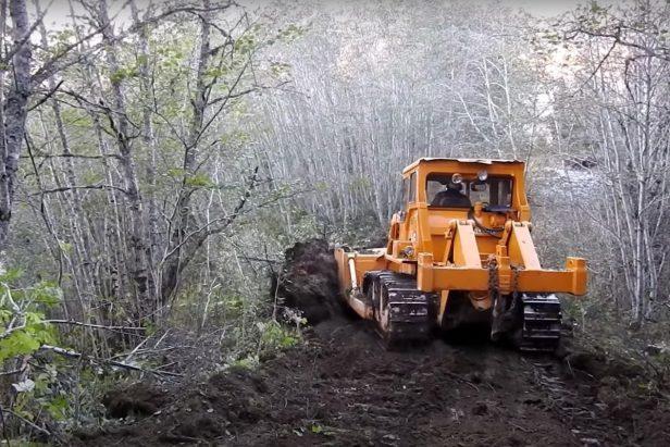 Caterpillar Bulldozer Plows Through Forest to Make New Logging Roads