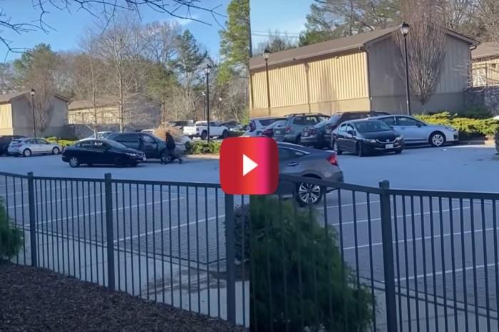 Confrontation at Dog Park Ends in Parking Lot Crash