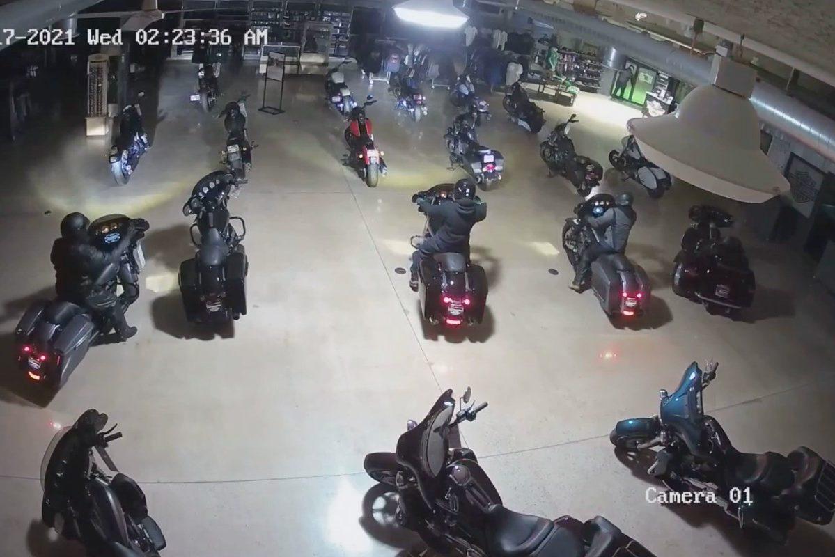 thieves steal harley davidsons