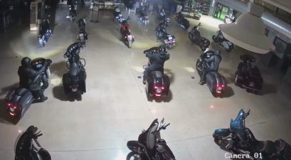thieves steal harley davidsons