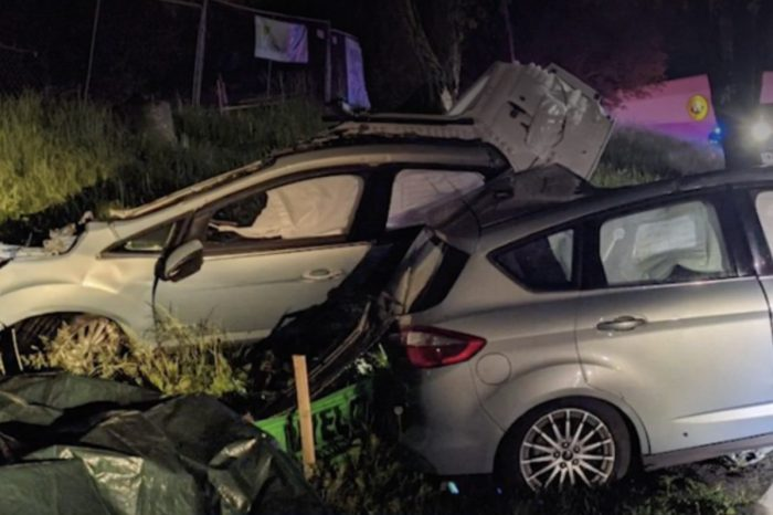 Car Gets Torn Completely in Half After Crashing Into Tree