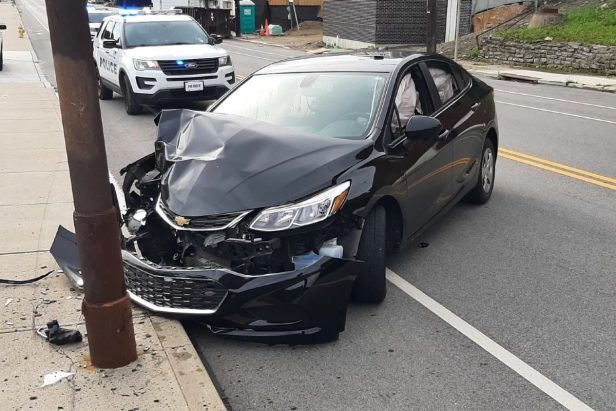 Police Say That a Cicada Was Responsible for This Car Crash In Ohio